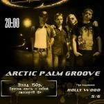 Arctic Palm Groove в Подвале!
